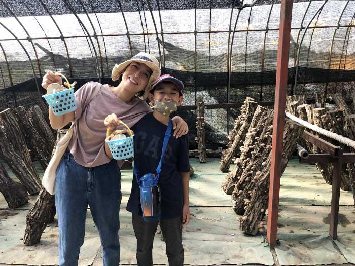 原木椎茸狩り体験観光