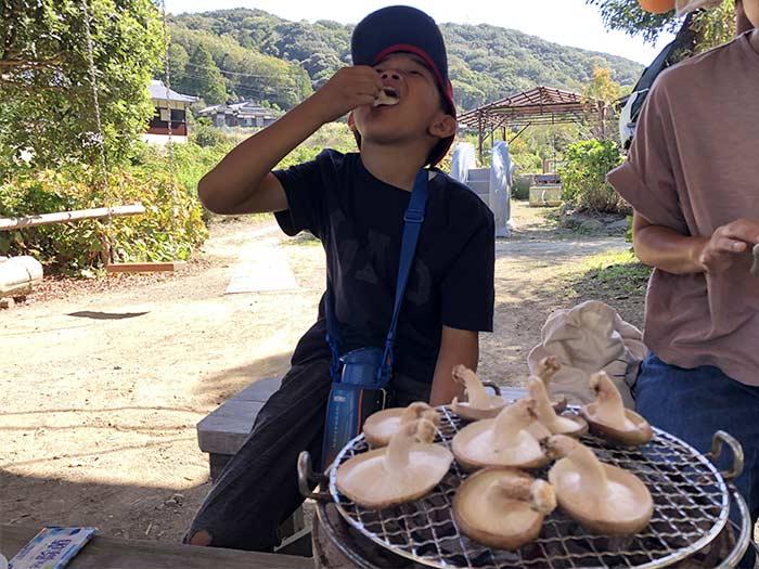 原木椎茸を食べる息子